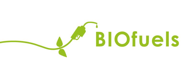 Biofuels Shaw Renewables Biomass Biogas Renewable Energy Clean Energy
