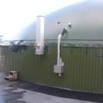 Shaw Renewables Biomass Biogas renewable energy